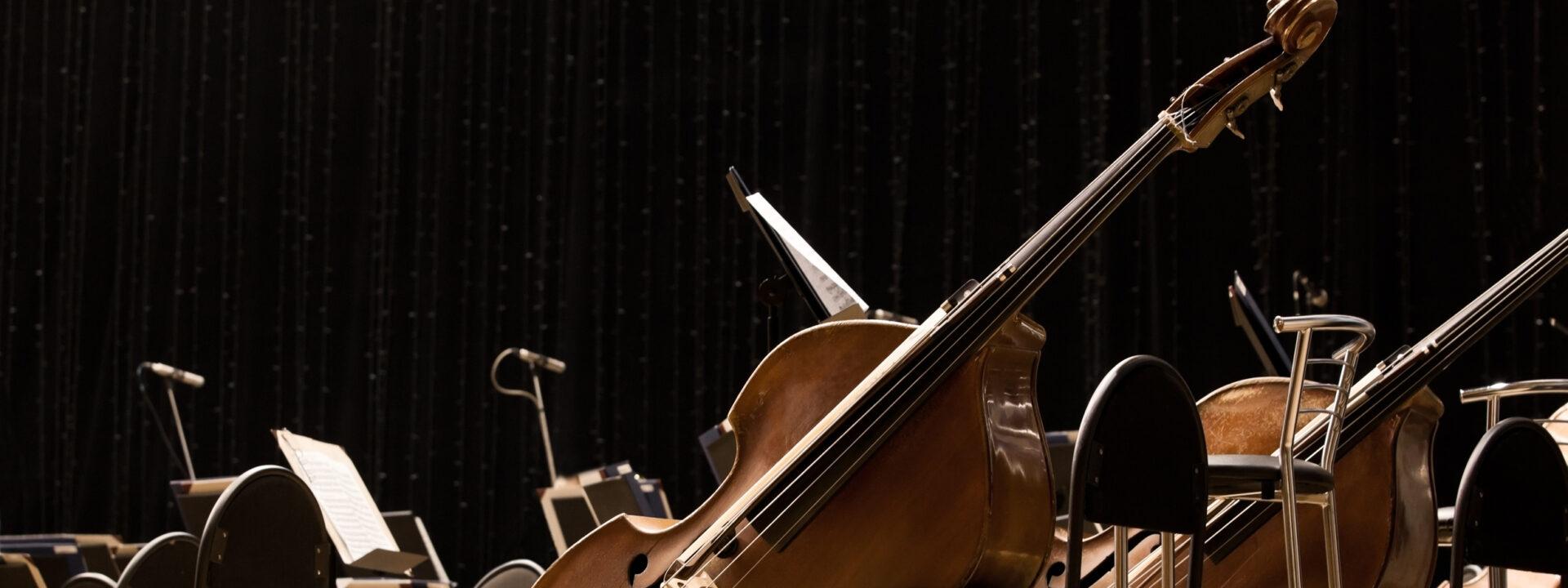 Muzikaal behang met impact